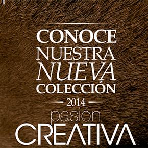 Pasión Creativa