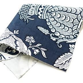 genero ailanthus azul revista ed