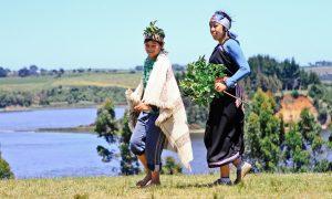 programa-patrimonio-mapuche-lago-budi-1